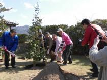 合同植樹1